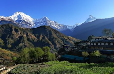 B Trekking in Nepal Pvt. Ltd