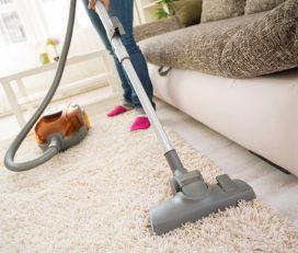 Carpet and Sofa Shampooing