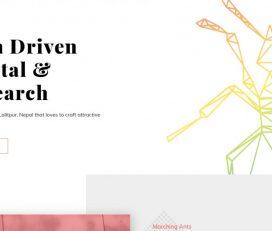 Marching Ants – Best Digital Marketing Agency in Nepal