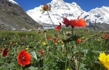Namaste Nepal Trekking & Research Hub Pvt. Ltd